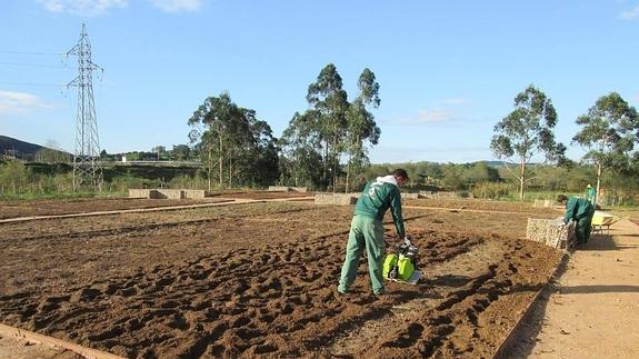 huertos-ecologicos--575x323
