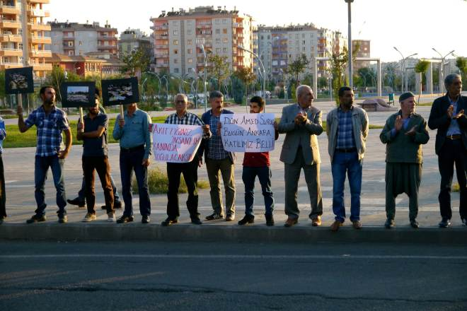Amed3