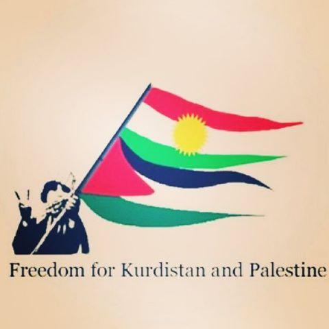 Freedom K y P
